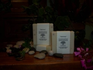 Soap Bar (the Exfoliator)